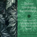 Indoor Gardening for Wellbeing