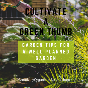 Cultivate a green thumb